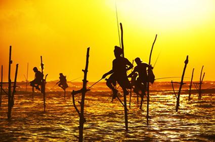 Memorias de Sri Lanka y las playas del sur